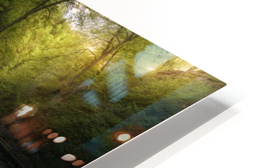 Gorge 1. HD Sublimation Metal print