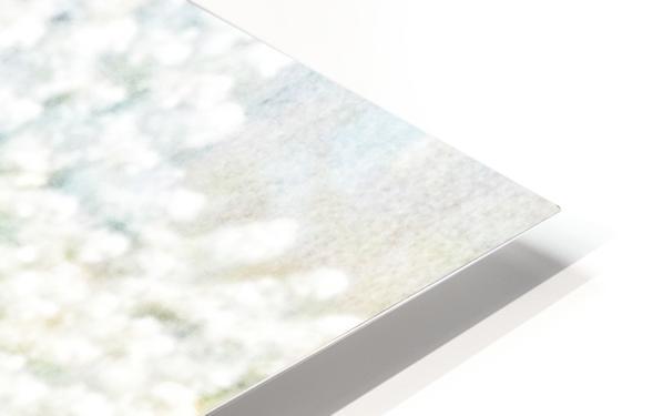 BURST - YELLOW & WHITE HD Sublimation Metal print