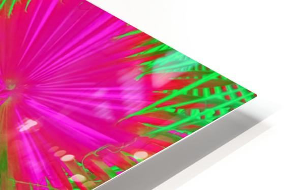 closeup palm leaf texture abstract background in pink and green HD Sublimation Metal print