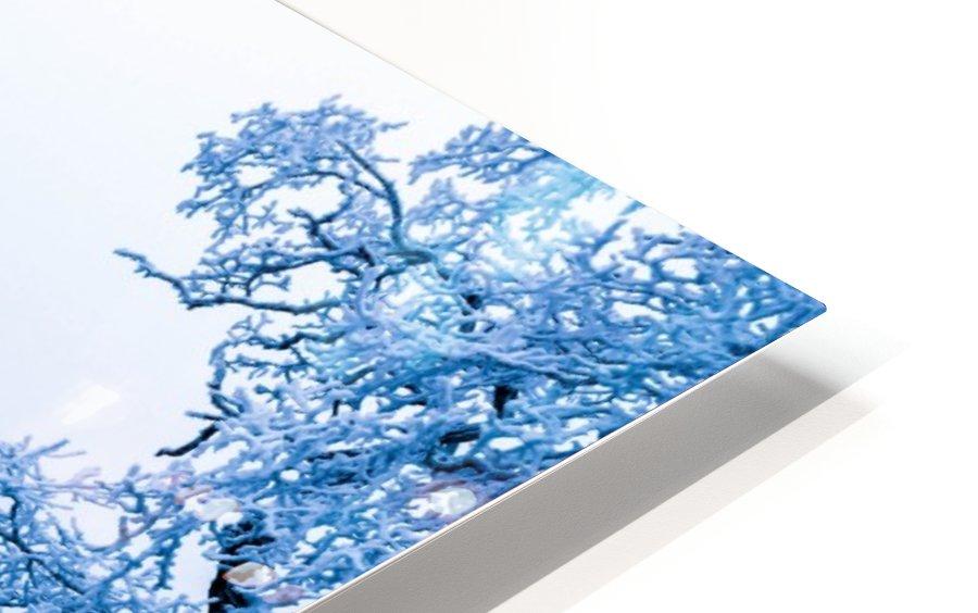 nature HD Sublimation Metal print