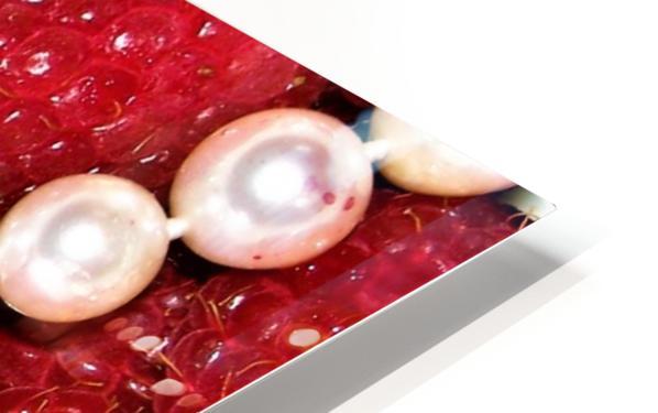 Raspberry pearls HD Sublimation Metal print