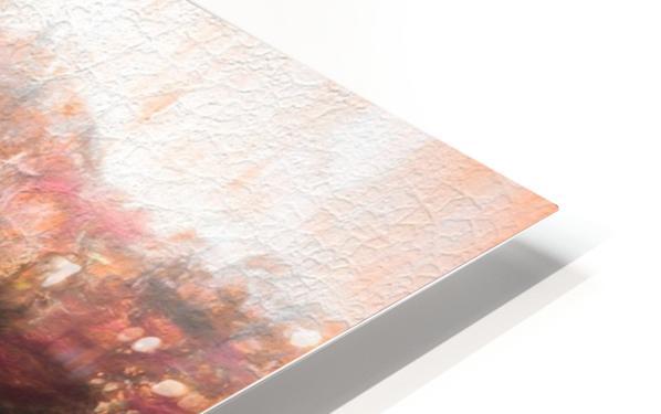The Raanana Park 1 HD Sublimation Metal print