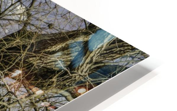 Looking Through HD Sublimation Metal print