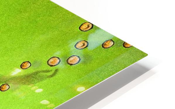 Grece HD Sublimation Metal print