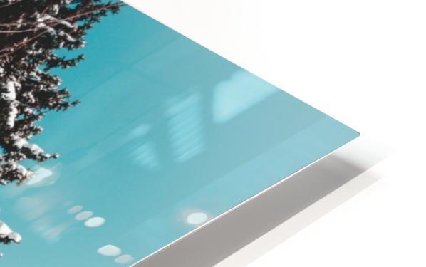 Snowy Pine Trees HD Sublimation Metal print