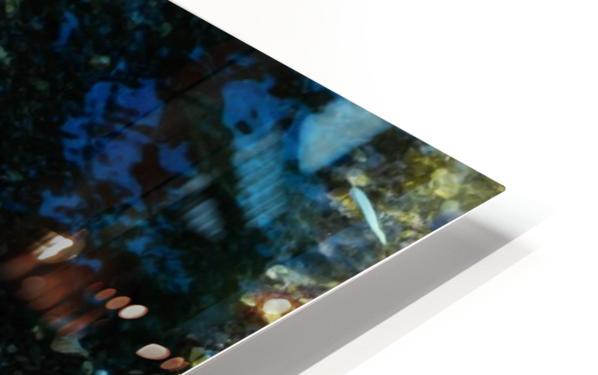 Lake Crystal HD Sublimation Metal print
