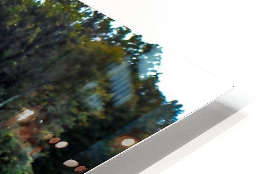 DSC_0949 HD Sublimation Metal print