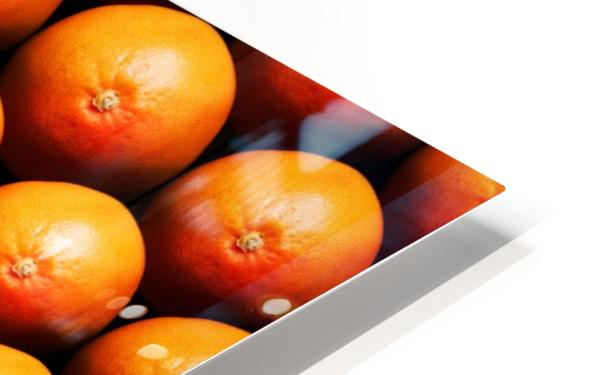 Grapefruit slice between group HD Sublimation Metal print