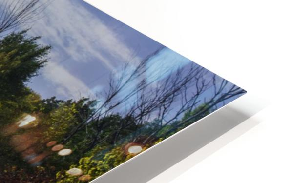 A sunny autumn day HD Sublimation Metal print