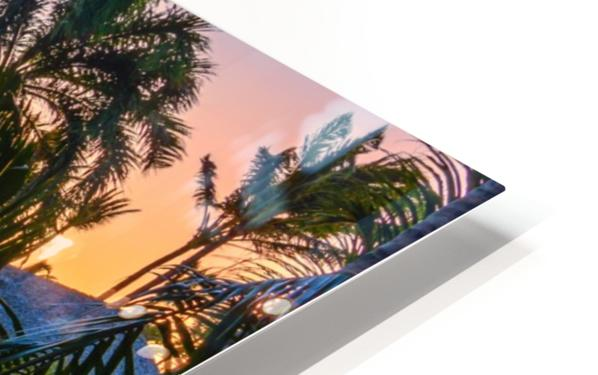 Multicolored tropical dawn with pond and palm trees, white pelican HD Sublimation Metal print