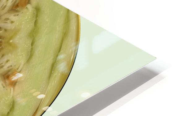 melon 1 HD Sublimation Metal print