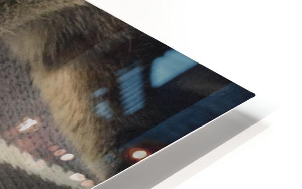 Gizmo - sleepy Impression de sublimation métal HD