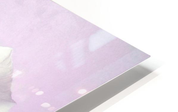 Purple Pansy HD Sublimation Metal print