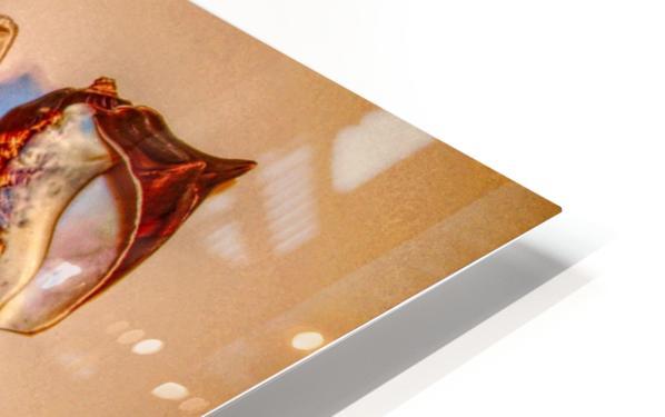 Sea Treasures HD Sublimation Metal print