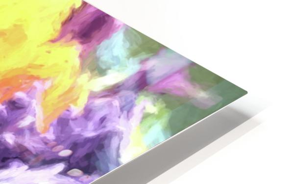 Living Color HD Sublimation Metal print