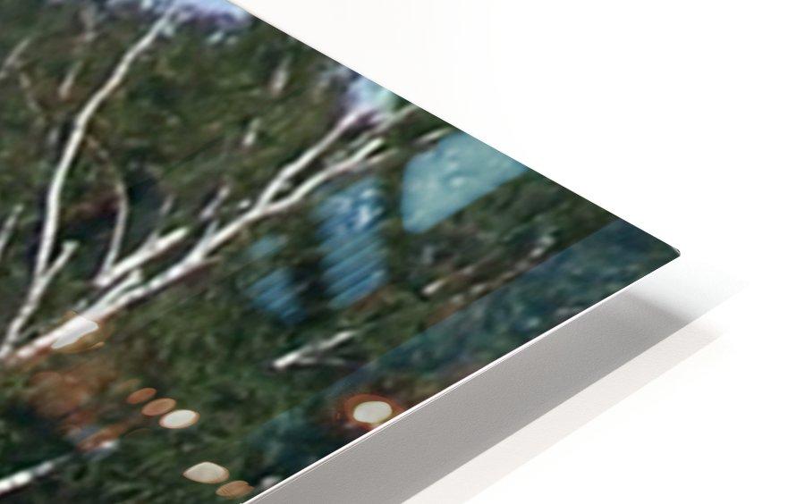 Sasquatch1 HD Sublimation Metal print