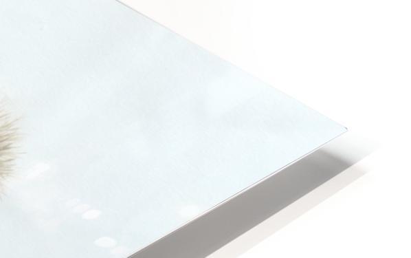 Foggy HD Sublimation Metal print