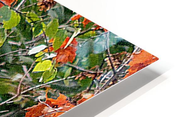 AutumnEagle HD Sublimation Metal print