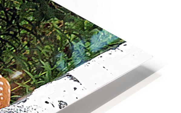 FawnBySaltBlock3 HD Sublimation Metal print
