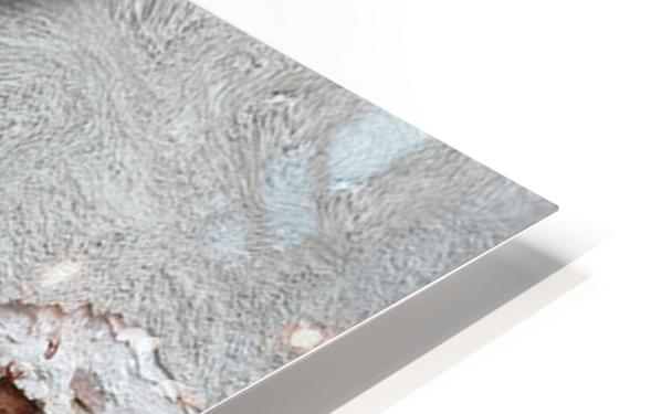 The Meditative Emotion HD Sublimation Metal print