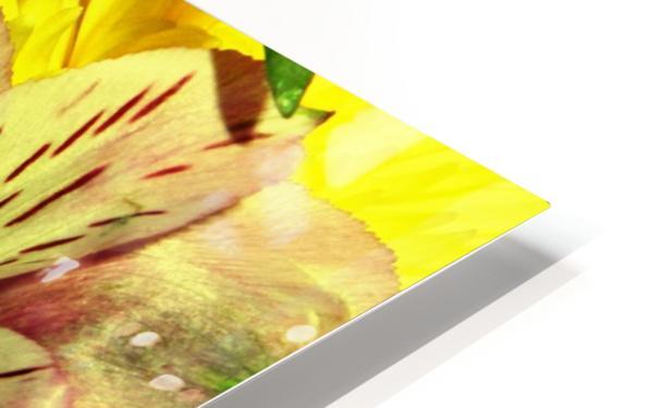 E (1) HD Sublimation Metal print