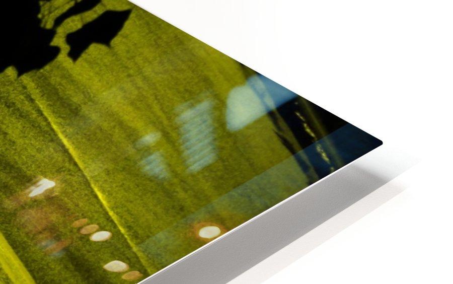 sofn-330900A2 HD Sublimation Metal print