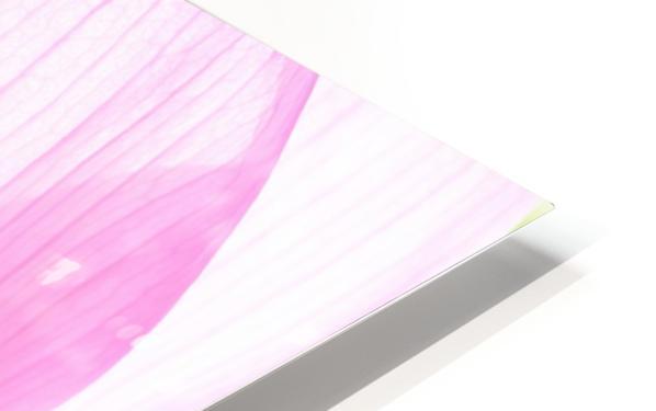 Lily Macro HD Sublimation Metal print