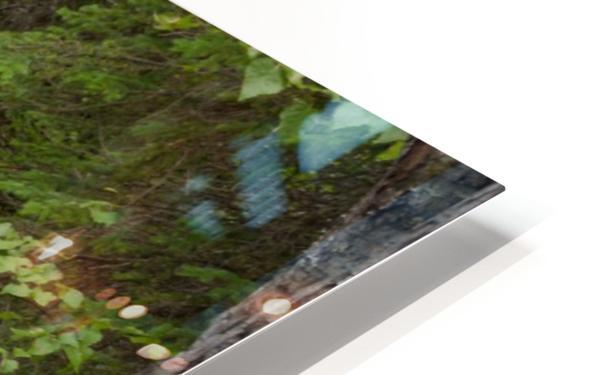 Beautiful Waterfall Photograph HD Sublimation Metal print