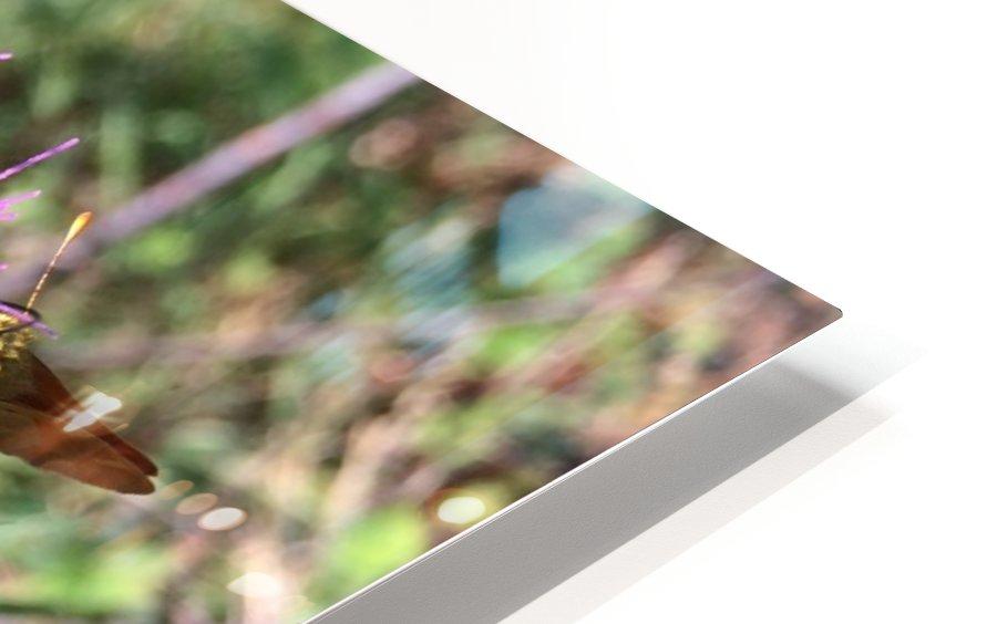 Bug Heaven HD Sublimation Metal print