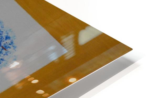 ahson qazi landscape (2) HD Sublimation Metal print