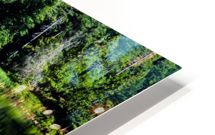 Saturated Scene HD Sublimation Metal print