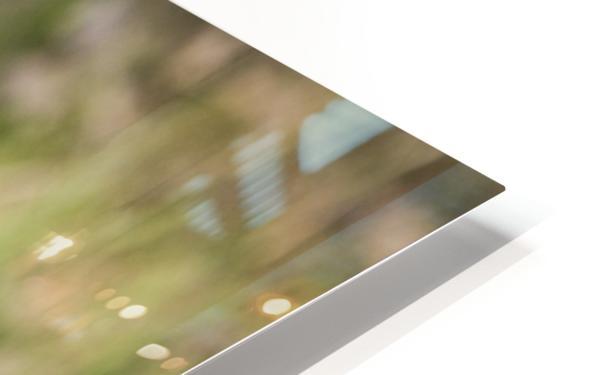 _T8C7860 HD Sublimation Metal print