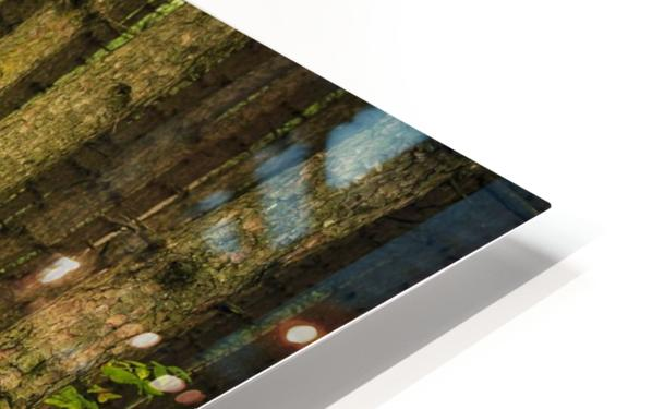 _S9A1813 Modifier HD Sublimation Metal print