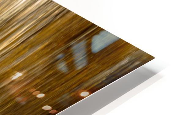 2S9A2743 HD Sublimation Metal print