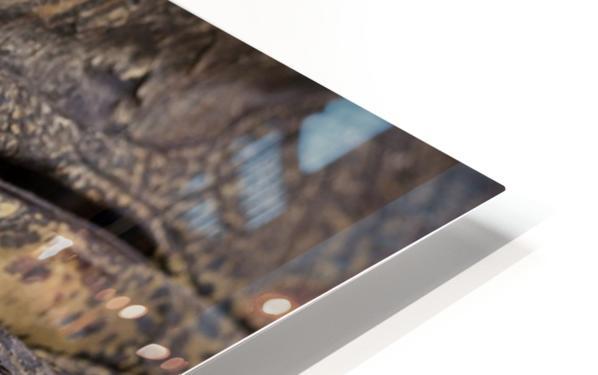 164A1267 HD Sublimation Metal print