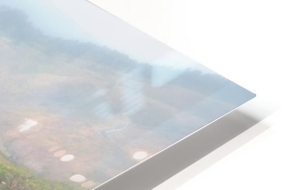 Coastal Views Fog HD Sublimation Metal print