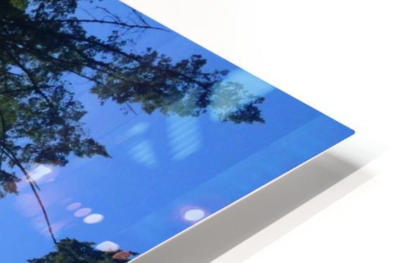 Weyerhaeuser Tree HD Sublimation Metal print