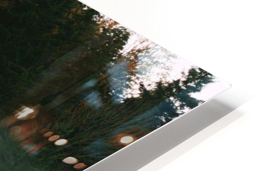 Weyerhaeuser morning HD Sublimation Metal print