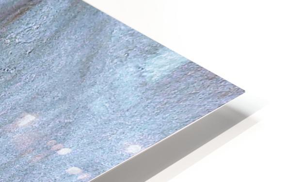 20180918_113713 HD Sublimation Metal print