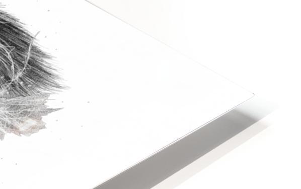 Devine HD Sublimation Metal print