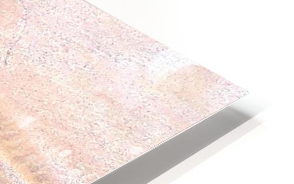 20180930_145000 HD Sublimation Metal print