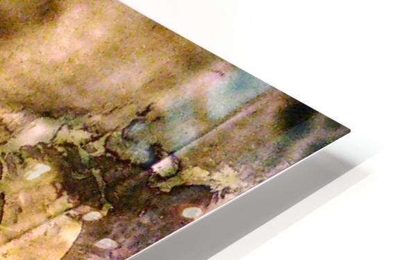 IMG_20181004_082754_1538657839705 HD Sublimation Metal print