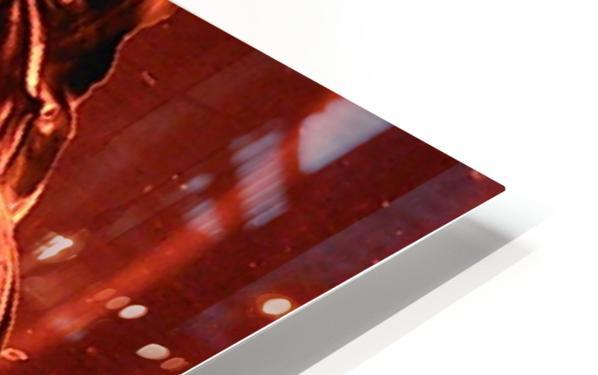 1538718920796 HD Sublimation Metal print