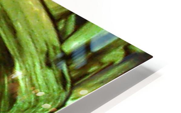1539065660892 HD Sublimation Metal print