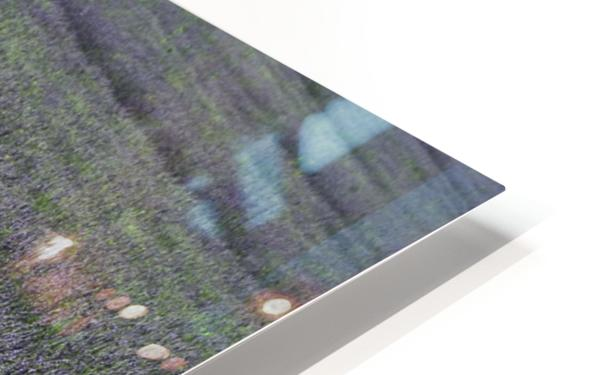 Red line HD Sublimation Metal print
