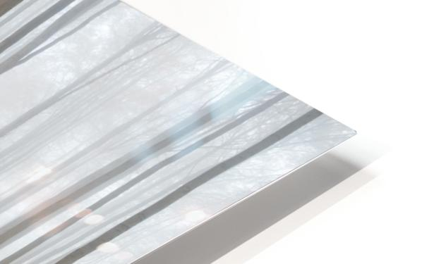 Puddle HD Sublimation Metal print