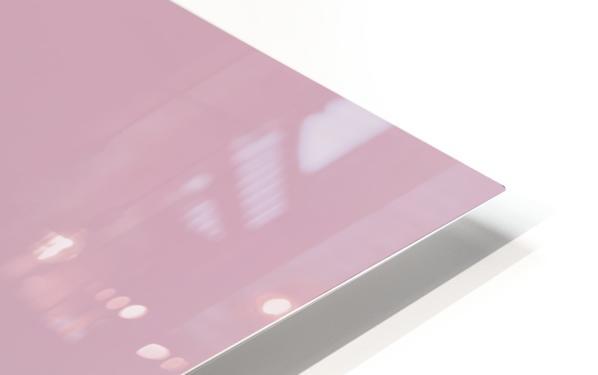 Flamingos HD Sublimation Metal print