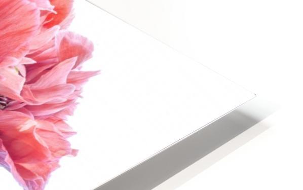 Fancy HD Sublimation Metal print