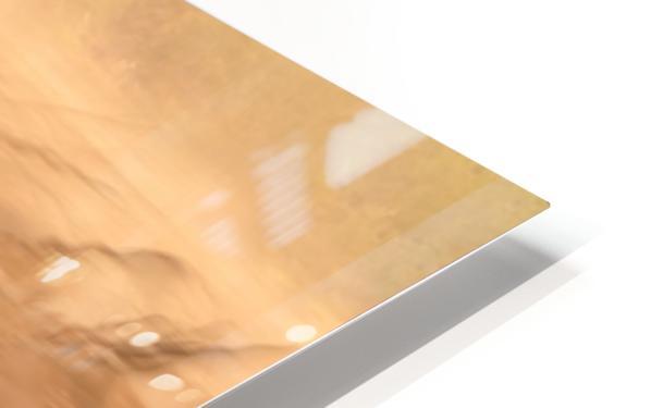 Black Bucks HD Sublimation Metal print