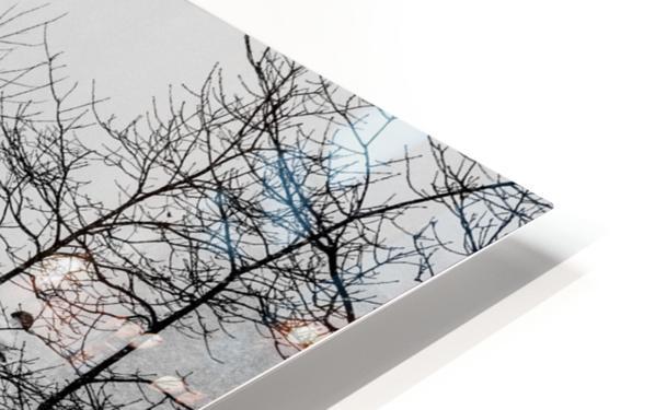 Gooderham in Winter HD Sublimation Metal print